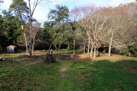 Antigo Viveiro Florestal