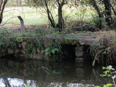 Ponte de Linhares
