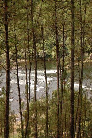 MLG - Trilho Percursos Marginais do Rio Minho