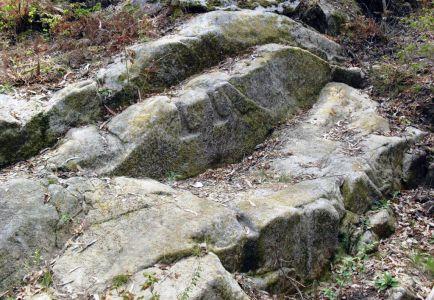 Lagar Escavado na Rocha (Penedo das Chaves)