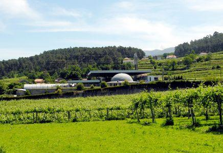 Quintas de Melgaço